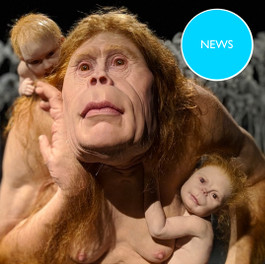 GoMA - Patricia Piccinini: Curious Affection exhibition